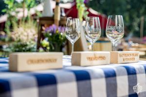 20180610 Bacchus Wijnfestival 2018 028