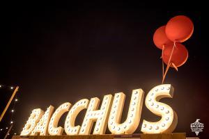 20180608 Bacchus Wijnfestival 2018 059