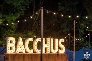 20180616 Bacchus Wijnfestival 2018 095
