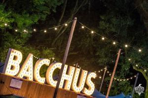 20180616 Bacchus Wijnfestival 2018 096
